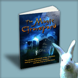 Book The Magic Graveyard by Al The Only